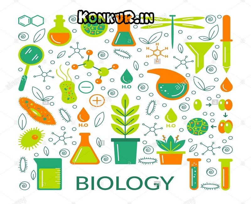 دانلود 210 تست جمع بندی زیست شناسی پایه دهم با پاسخ
