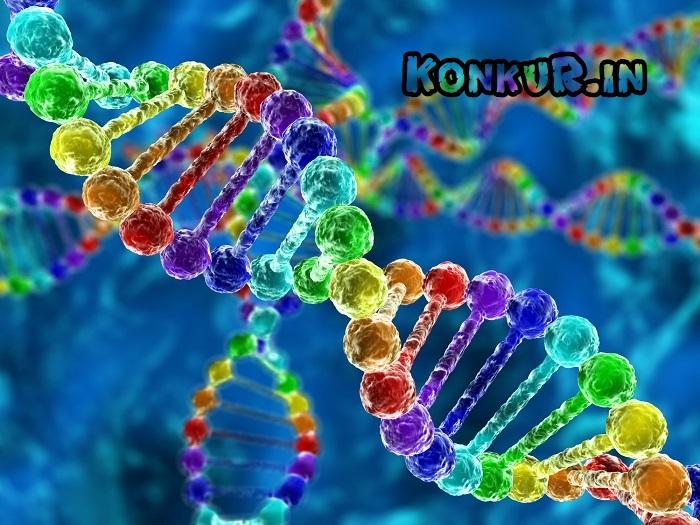 200 تست دشوار جمع بندی ژنتیک زیست شناسی