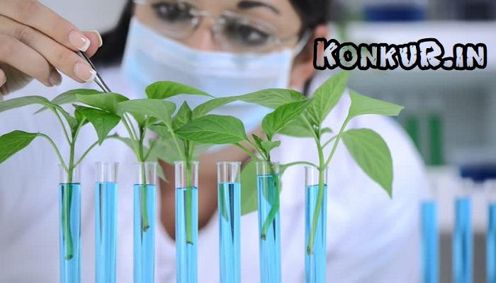 دانلود ۴۰۰ تست دشوار جمع بندی زیست گیاهی پایه