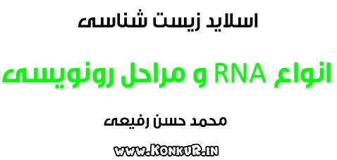 اسلاید انواع RNA و مراحل رونویسی