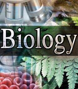 فیلم های آموزشی جدید زیست شناسی