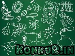 تست زیست مباحث گوارش، تبادل گازها، پروتئین سازی و مهندسی ژنتیک