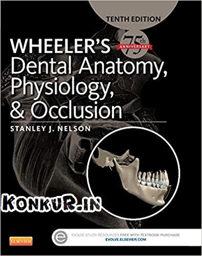 دانلود کتاب آناتومی دندانی، فیزیولوژی و آکلوژن ویلر ویرایش 10